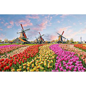 Uncompressed landscape jigsaw puzzle, difficult educational toy, daily fun family game