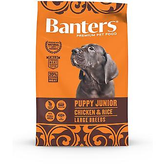 Banters Puppy & Junior Large (Dogs , Dog Food , Dry Food)