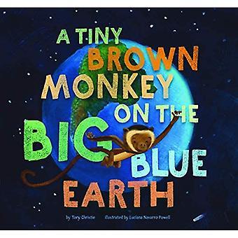 Een uiterst kleine Bruine Aap op de Grote Blauwe Aarde