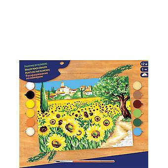 ksg Senior Painting by Numbers Sunflowers