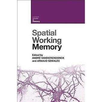 Ruimtelijk werkgeheugen Huidige problemen in het geheugen