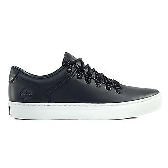 Timberland Adv 20 Cupsole A1RWS universal all year men shoes