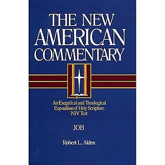 Job: New American Commentary, Vol. 11