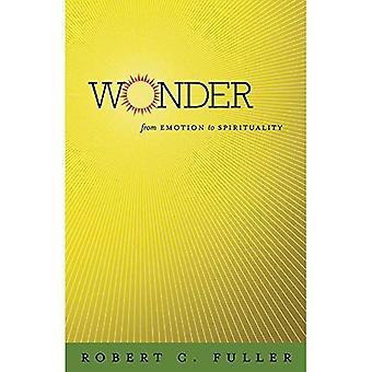 Wunder: Aus Emotionen, Spiritualität