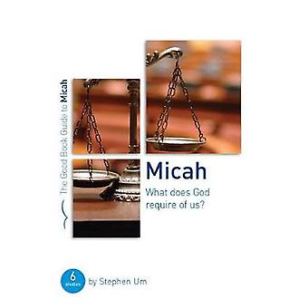 Micah - What Does God Require of Us? by Stephen Um - 9781909559738 Book
