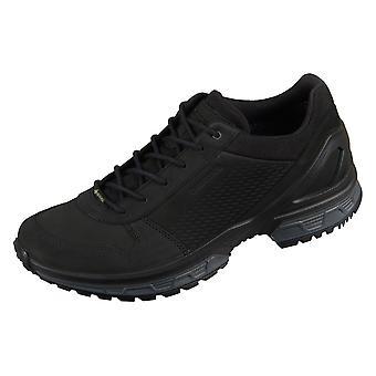 Lowa Walker Gtx 3108190999 trekking all year men shoes
