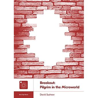 Breakout  Pilgrim in the Microworld by David Sudnow & Foreword by Gabe Durham