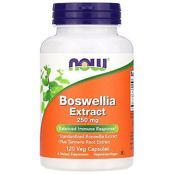 Extracto de Boswellia 250 mg (120 Cápsulas Vegetales) - Ahora Alimentos