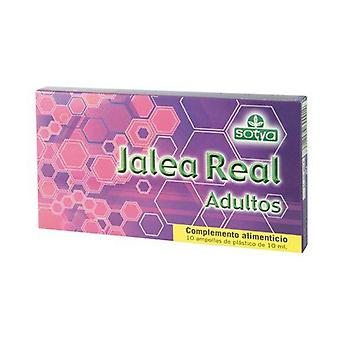 Royal Jelly Adults 10 ampoules