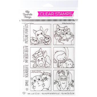 """My Favorite Things Birdie Brown Stamps 6""""X8"""" - Picture Perfect"""