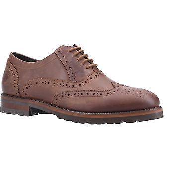 هش الجراء الرجال توبياس الدانتيل حتى الأحذية بروغ الجلود