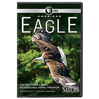 Nature: American Eagle [DVD] USA import