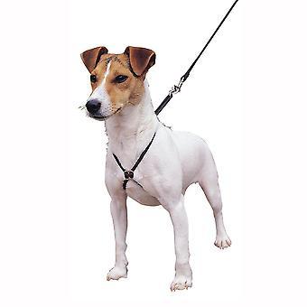 Lupi प्रशिक्षण कुत्ता हार्नेस