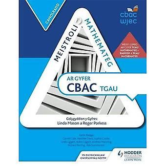 Mestring matematikk for WJEC GCSE:Intermediate walisiske Edition (Eurostars)