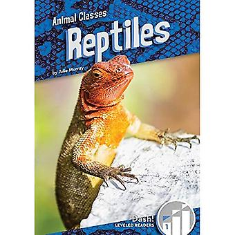 Reptiles (Animal Classes: Dash! Leveled Readers, Level 1)