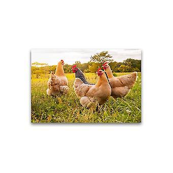 Kippen bij De Poster van de zonsondergang -Beeld door Shutterstock