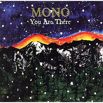 Mono - You Are There [Vinyl] USA import