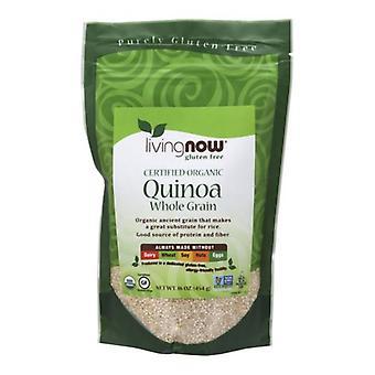 Nyt Foods Quinoa Grain Organic, 1 lb