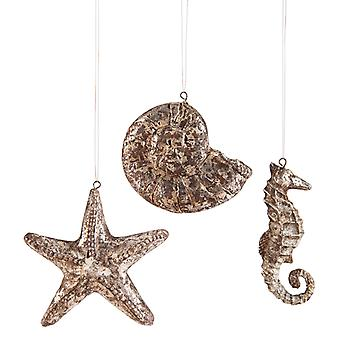 St. Augustine Starfish Shell Seahorse 4.5 Inch Holiday Ornaments Set of 3