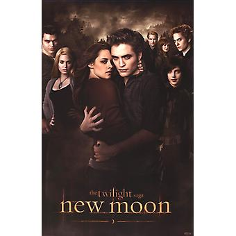 Twilight 2 - New Moon - Cullens affiche Poster Print