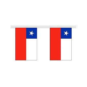 Chile Keltasirkku 6m 20 lippu