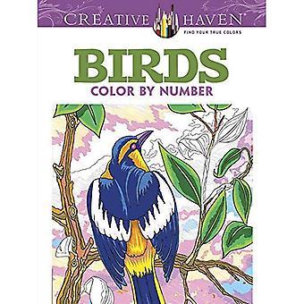 Kreative Oase Vögel Farbe durch Anzahl Malbuch (kreative Oase Malbücher)