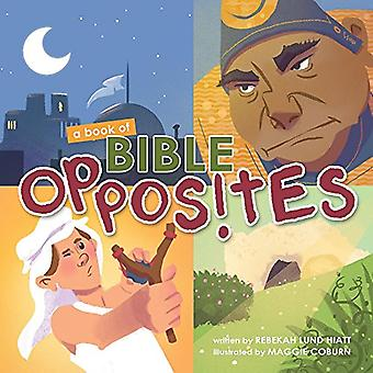 A Book of Bible Opposites [Board book]
