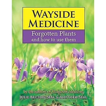 Wayside Medicine - Forgotten Plants to Make Your Own Herbal Remedies -