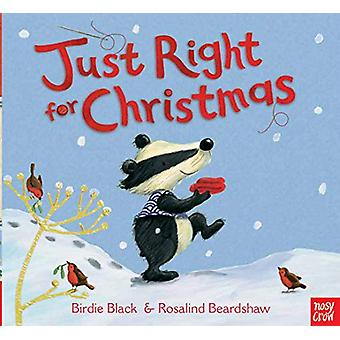 Just Right for Christmas by Birdie Black - 9780857638557 Book