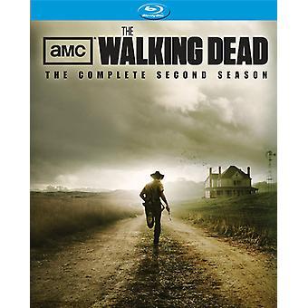 The Walking Dead: Slutför andra säsong [4 skivor] [Blu-ray] [BLU-RAY] USA import
