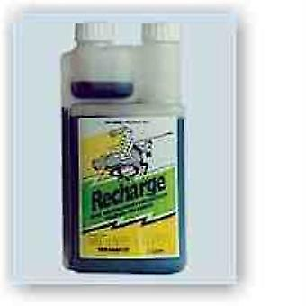 Recharge Equine 1L