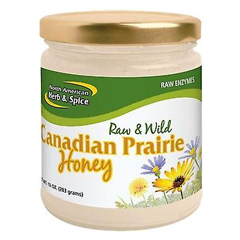 North American Herb & Spice Canadian Wild Prairie Honey, 10 Oz