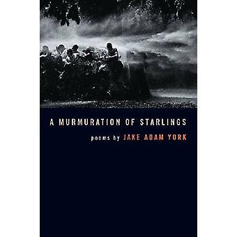 A Murmuration of Starlings by Jake Adam York - 9780809328376 Book