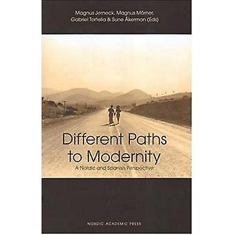 Different Paths to Modernity by Magnus Jerneck - 9789189116542 Book