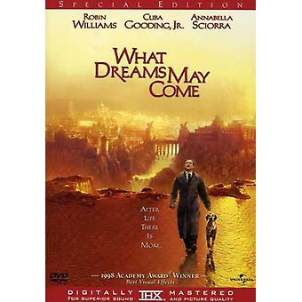 What Dreams May Come [DVD] USA import