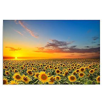 Deco Panel, Sonnenblumenlandschaft