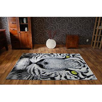 Rug BCF FLASH 33292/170