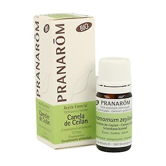 Organic Ceylon Cinnamon Essential Oil 5 ml of essential oil