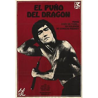 Re-Enter the Dragon Movie Poster (11 x 17)