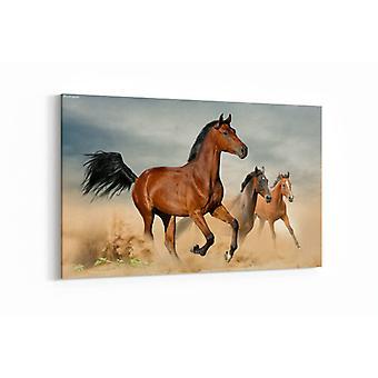 Malerei - Wilde schöne Pferde laufen in Freiheit — 100x70cm