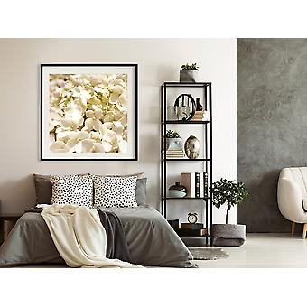Juliste - Rauhoittavat kukat-30x30