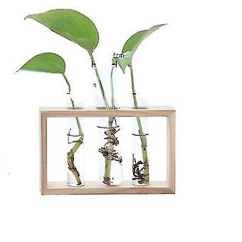 Plantador de vaso de vidro e madeira - Vaso de Flores de Plantas Hidropônicas de Terrarium