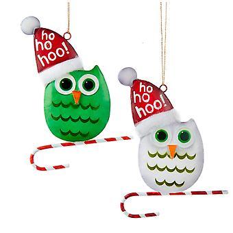 Kurt Adler grün und weiß Snowbird Eulen in Santa Hüte Ornamente 2er Set