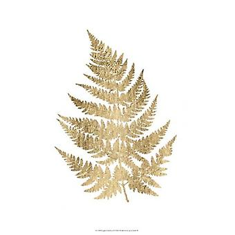Graphic Gold Fern IV Poster Print by Studio W (13 x 19)
