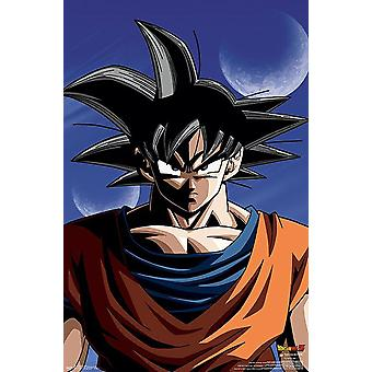 Dragon Ball Z juliste Goku