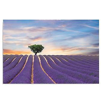 Deco Panel, lavender field