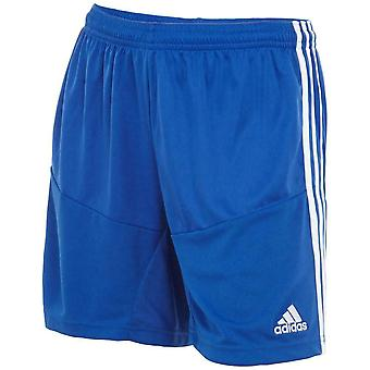 Adidas Women's Campeon 13 Summer Sports Shorts X58313