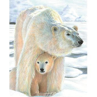 Värikynä numerosarjan mukaan - Polar Love