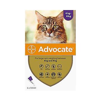 Talsmann katter over 4kg (8.8 lbs)-6 Pack