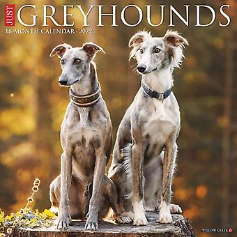 Just Greyhounds 2022 Wall Calendar Dog Breed by Willow Creek Press